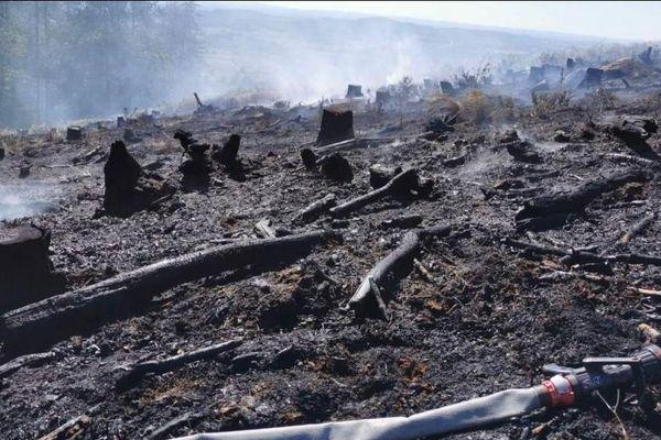 5000 m² de végétation et de déchets de bois ont brûlé sur une parcelle au coeur du Morvan, à Château-Chinon (Nièvre).