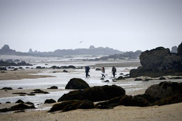 Des pêcheurs à pied sur l'estran