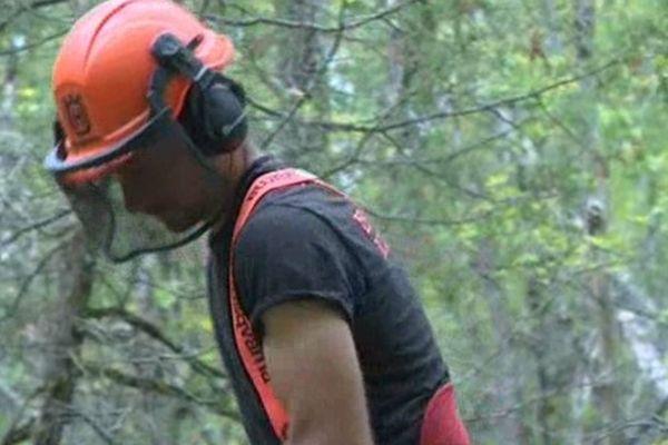 David Allard est bucheron. L'objectif de son entreprise est de valoriser le bois local tout en exploitant la forêt de façon durable
