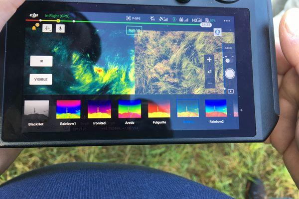 Sur le radar de la caméra thermique, le point rouge sur la gauche de l'image montre la présence d'un animal.