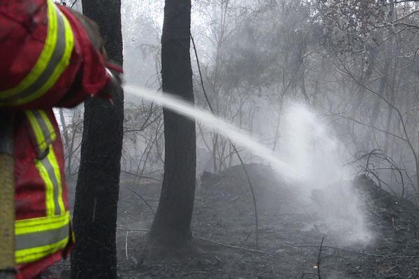 43 pompiers sont intervenus pour maîtriser un feu menaçant de s'étendre près d'Eymoutiers
