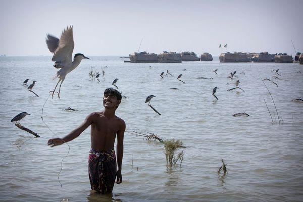 Sur le lac Manchar, 350 km2 d'eau douce, il ne reste plus qu'une quarantaine de bateaux-maisons habités par les Mohana