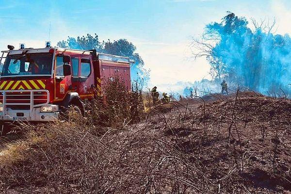Torreilles (Pyrénées-Orientales) - 15 hectares de végétation partis en fumée- 30 mai 2019.