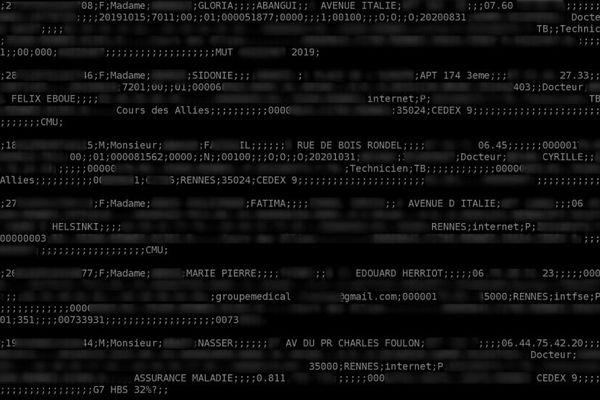 Capture d'écran du fichier de données médicales piratées - DR