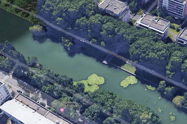 Le Nouveau Bassin n'est pas autorisé à la baignade.