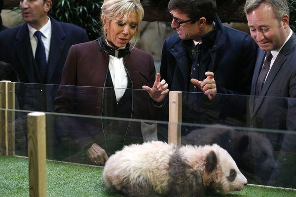Brigitte Macron est marraine du bébé panda Yuan Meng.