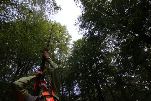 Depuis 1992, grâce au Réseau national de suivi à long terme des écosystèmes forestiers (RENECOFOR), l'ONF suit l'évolution de la forêt sur le long terme.