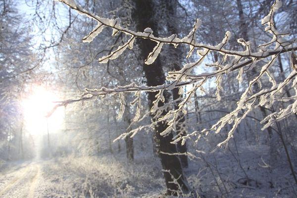 De le neige est attendue en Auvergne dans la nuit de lundi à mardi 20 novembre.