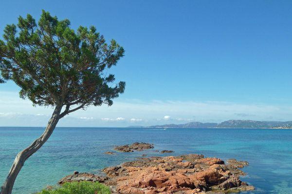 Paysage marin sur la plage de Palombaggia, un lieu-dit situé sur la commune de Porto-Vecchio en Corse-du-Sud.
