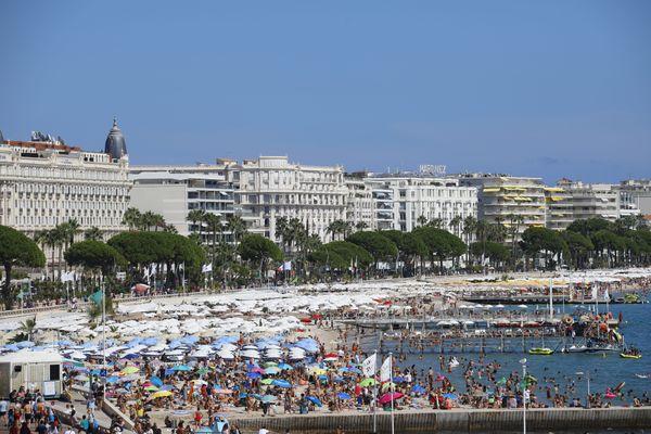 Avec la fréquentation des touristes l'été à Cannes, les tonnes de déchets augmentent conséquemment.