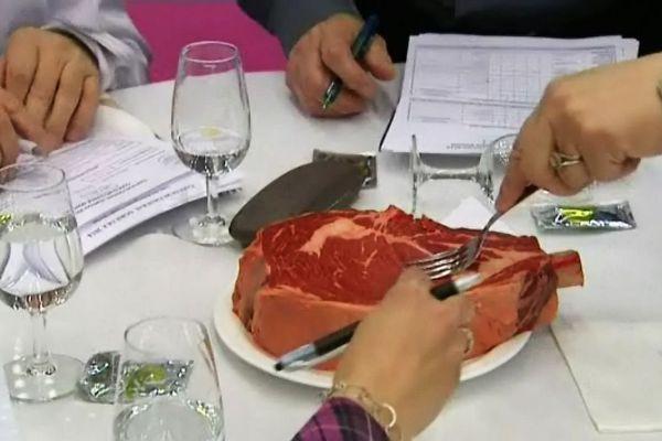 """Dans la catégorie """"produits"""" du Concours Général Agricole, une nouvelle catégorie est apparue : """"viandes bovines"""". Ici l'AOC beouf de Charolles est examaniée de très près !"""