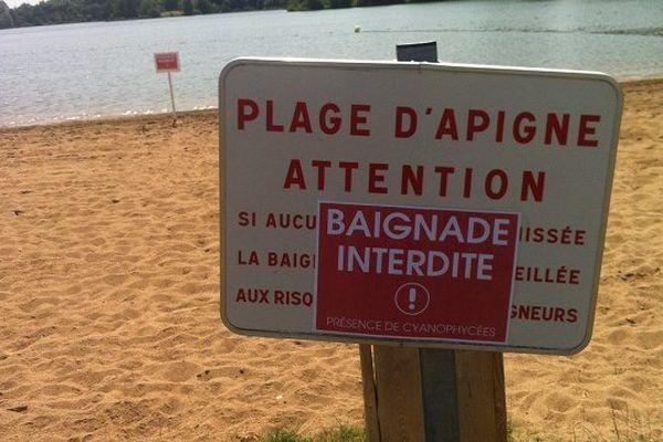 Des cyanobactéries présentes dans l'eau empêchent la baignade.