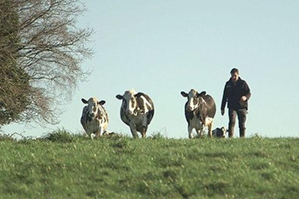 """"""" Le dernier des laitiers"""" , un film de Mathurin Peschet"""