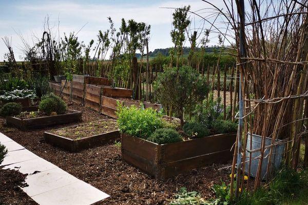 Avec le confinement, les Français en profitent pour cultiver leur jardin.