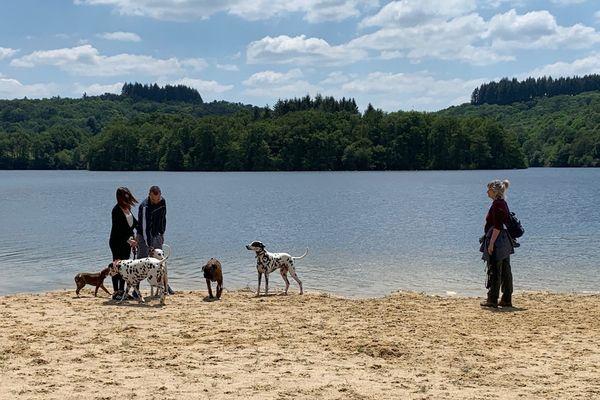 Les promeneurs ont profité du premier jour de réouverture du lac de Saint-Pardoux, en Haute-Vienne, ce samedi 16 mai.