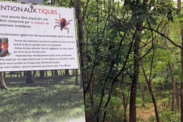 Panneau d'information en forêt alsacienne