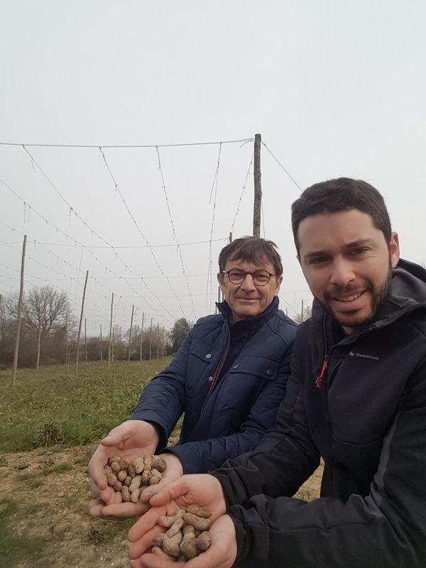 Thibaud Gigan et son père vont produire des cacahuètes en Mayenne
