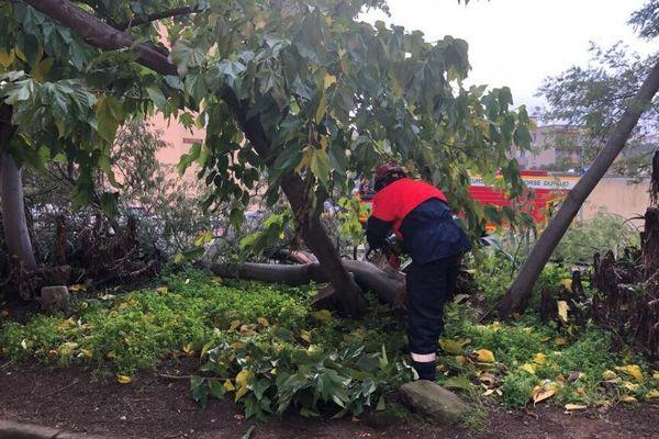 A Ajaccio, les pompiers interviennent pour couper les troncs et les branches qui gênent la route.