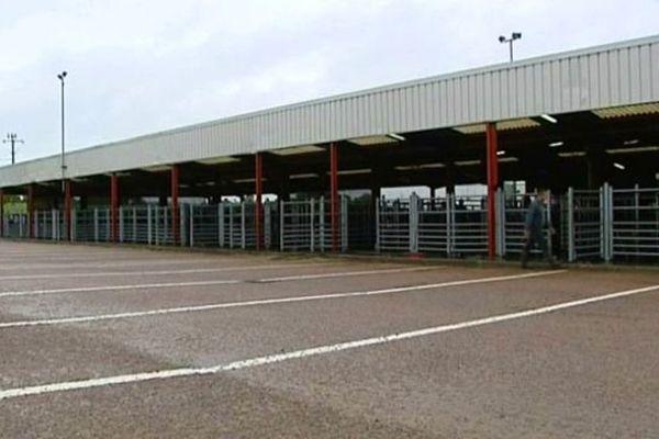 Depuis le retour de la fièvre catarrhale ovine, le marché aux bestiaux de Moulins-Engilbert tourne au ralenti.