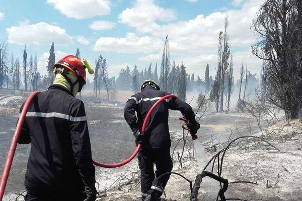 Les pompiers du SDIS 30 en train de lutter contre un incendie à Saint-Gilles, dans le Gard, où 5 hectares sont partis en fumée ce vendredi 12 juillet