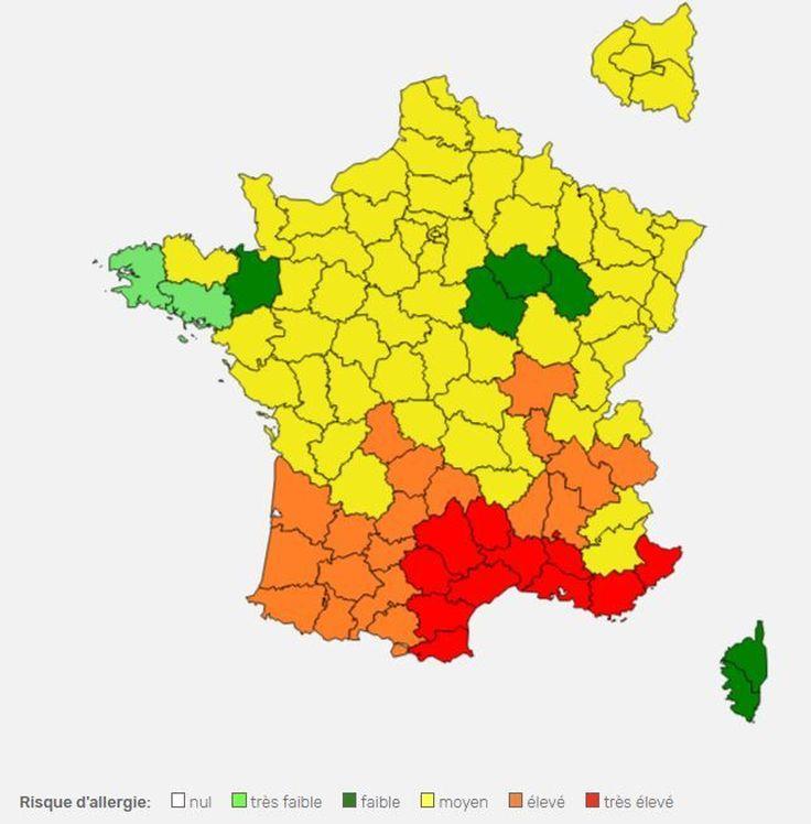 Pollen Plus Tot Le Printemps Plus Tot Les Reactions Allergiques En Aquitaine