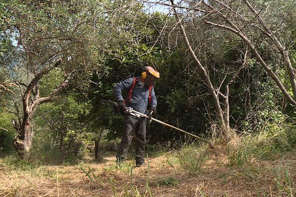 Grâce à la cagnotte de Julien Doré, Marc Gincourt a pu racheter du matériel et reprendre son activité de jardinier-paysagiste dans la vallée de la Roya.