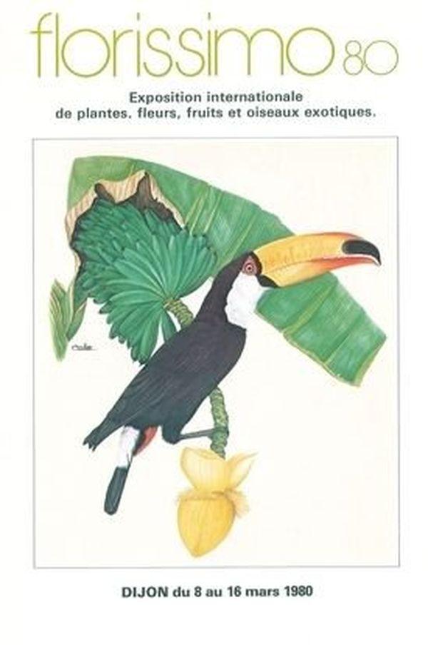 Le toucan, symbole de l'exotisme de l'exposition