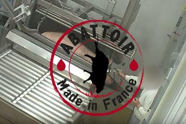 Capture d'écran de la vidéo de l'association L214 montrant des mauvais traitements infligés aux animaux à l'abattoir du Vigan, dans le Gard