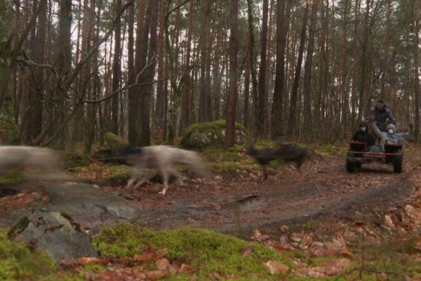 Christian Perlwitz pratique son activité en pleine forêt de Fontainebleau.