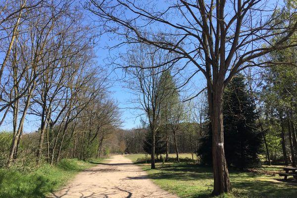 L'Arche de la Nature. 500 hectares de verdure aux portes du Mans.