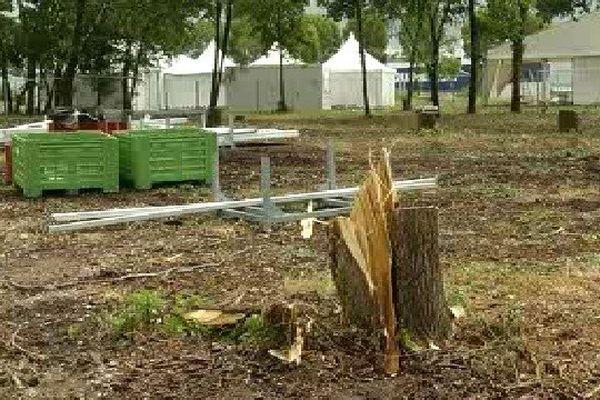 Le site Cissac, près de Pauillac, l'une des zones les plus touchées par les derniers orages