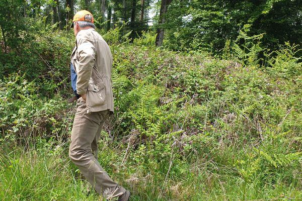 De nombreux bénévoles ont participé à de multiples battues sur la ville et dans la forêt de Fougères pour retrouver la septuagénaire disparue