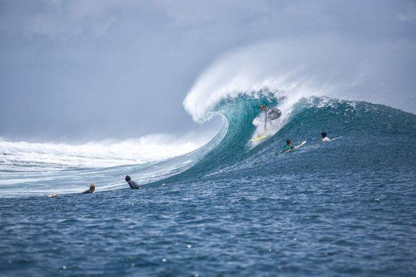 Surf - les vagues tant attendues...