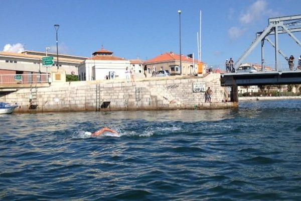 Le Sétois Bertrand Venturi seul en tête lors de la traversée de Sète à la nage - 24 août 2015