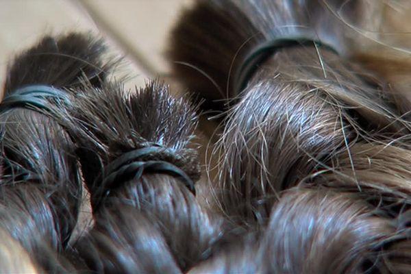 En France, 950 salons de coiffure récolte des mèches de plus de 20 centimètres pour aider des personnes atteintes d'un cancer.