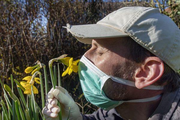 Le pollen est actuellement à son pic maximum.