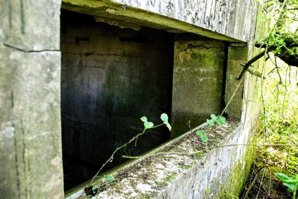 L'ancien poste de commandement de l'aérodrome de Caffiers offrait une vue plongeante vers Calais et la Manche. Elle est aujourd'hui obstruée par la végétation.