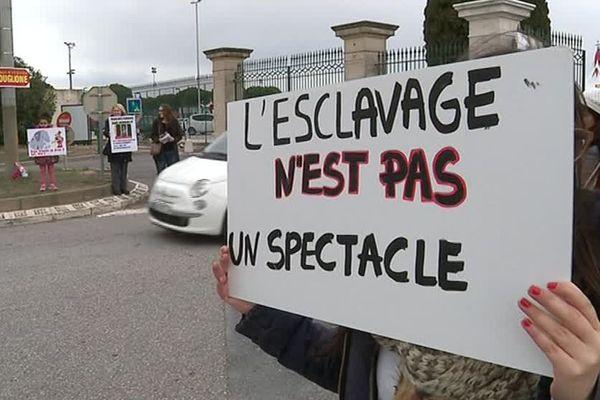 Le 7 janvier 2018, des manifestants se sont rassemblés devant le cirque Bouglione à Montpellier.