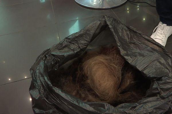 En Picardie, de nombreux coiffeurs participent à la collecte nationale de cheveux pour aider l'île Maarice à lutter contre la marée noire qui touche ses côtes.