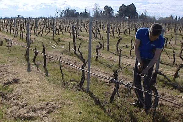 Franck Decouroux préfère aujourd'hui le vignoble aux salles de marchés...