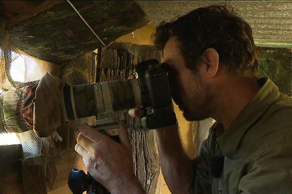 Pascal Etienne observe discrètement les animaux depuis son abri