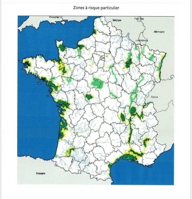 carte zones à risque H5N8