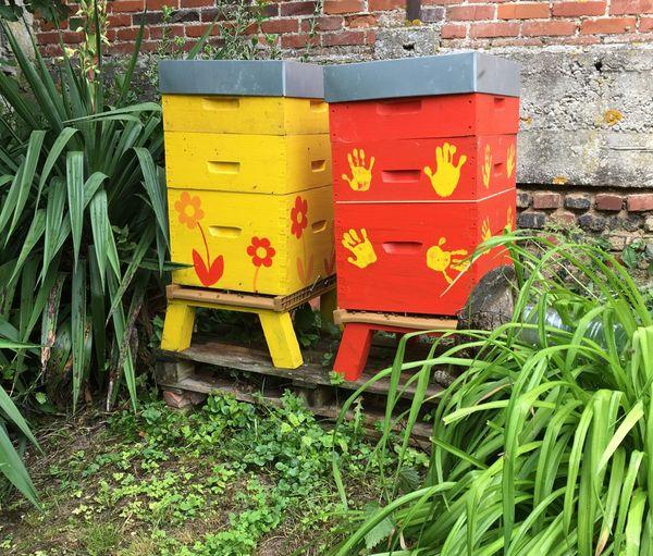 Le couple a installé deux ruches pour participer à la sauvegarde des abeilles.