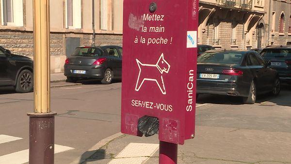 Canibox à Dijon