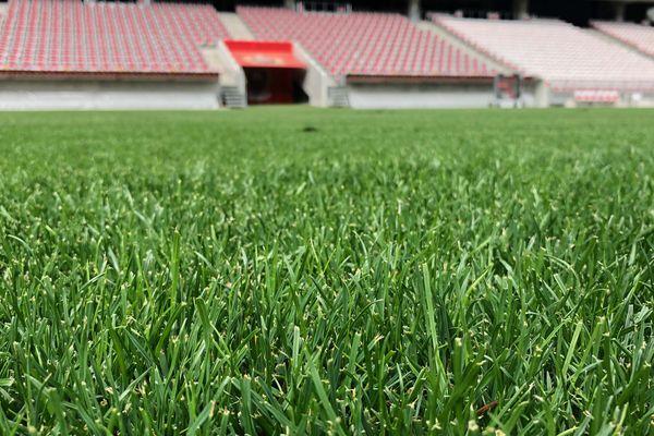 Une image du passé : la pelouse de l'Allianz Riviera est morte. Vive la nouvelle pelouse !