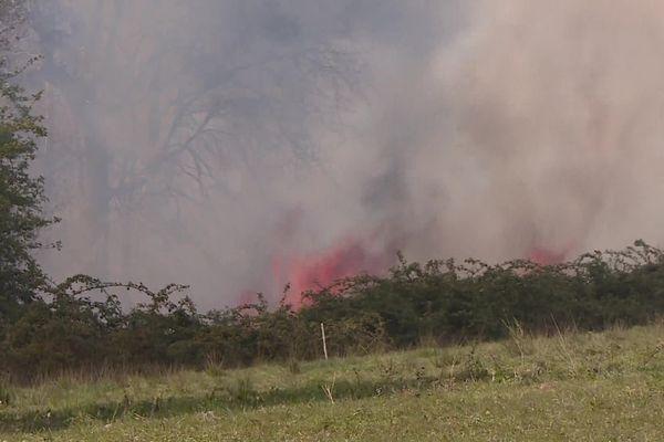 Le feu a déjà ravagé près de 30 hectares de forêt
