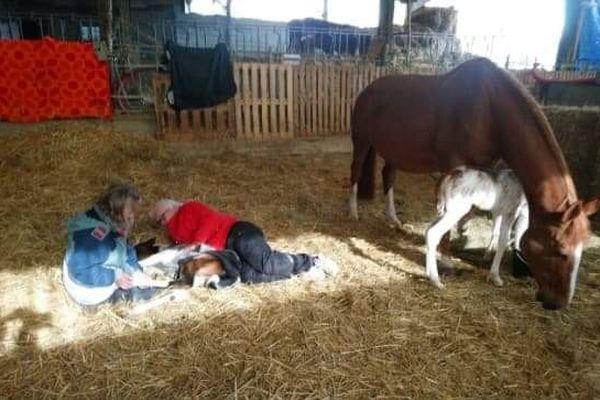Deux bénévoles prodiguent un massage à Vici, âgé de 10 jours.