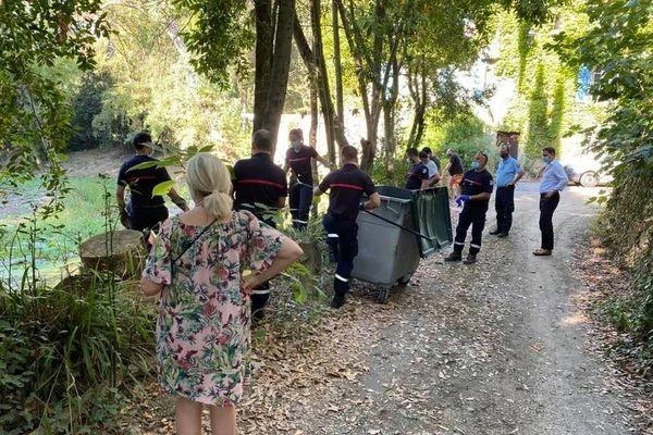 La mobilisation de pompiers, gendarmes et riverains a permis ce week-end le ramassage de plusieurs kilos de poissons morts.