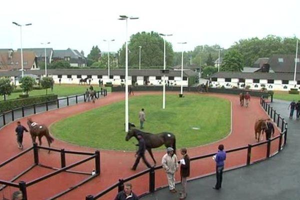 Vente de chevaux à Deauville