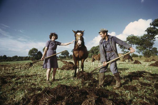Un portrait de la ruralité